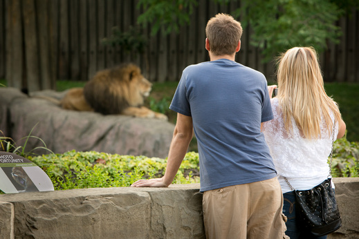 campus-14.1-couple-zoo-date