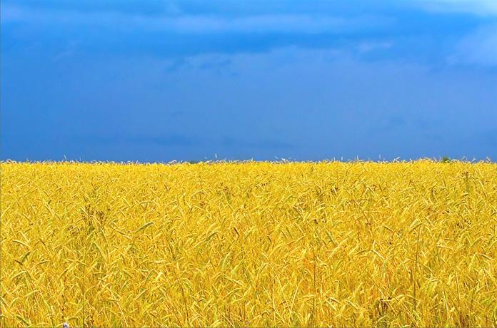 берви of Ukraine